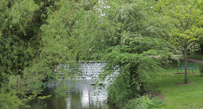 Waterfall Park Great Ayton