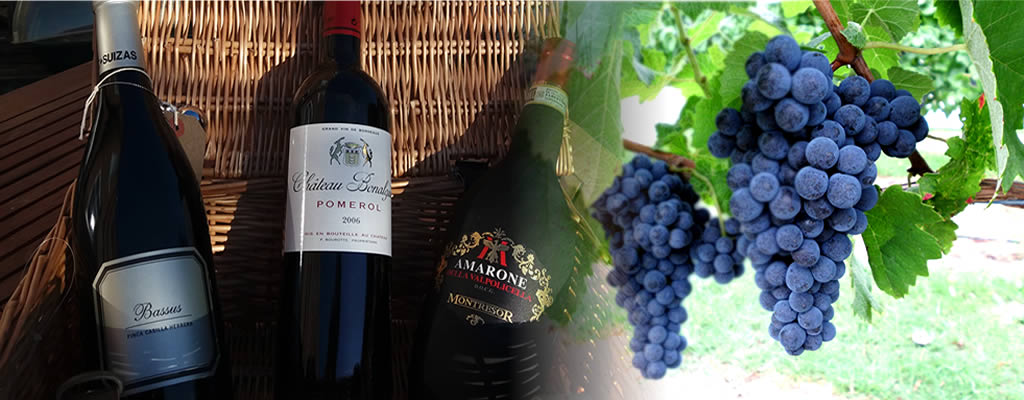 Sharman Wines in Great Ayton