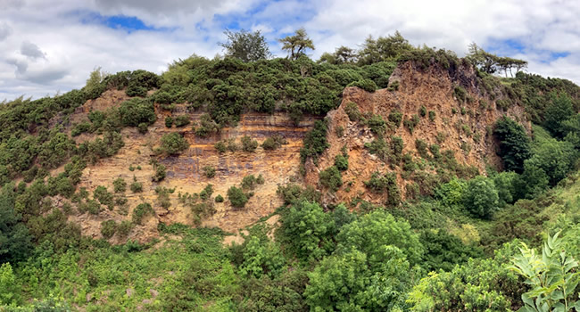 great-ayton-magical-woodland-adventures