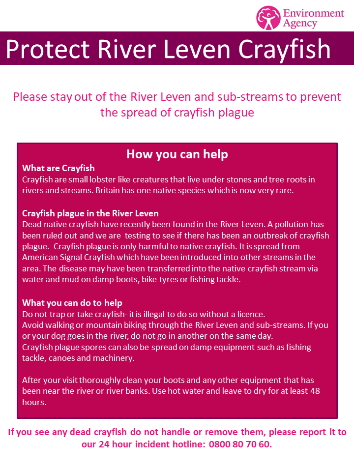 Protect River Leven Crayfish