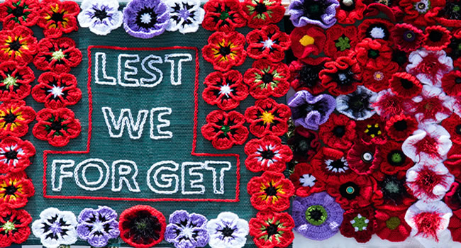 great-ayton-knitted-poppies-required-for-the-village-remembrance-display-2021